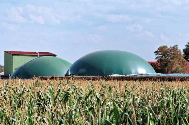 Kosten-Biogasanlage
